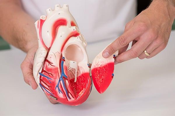 Kardiologie-1